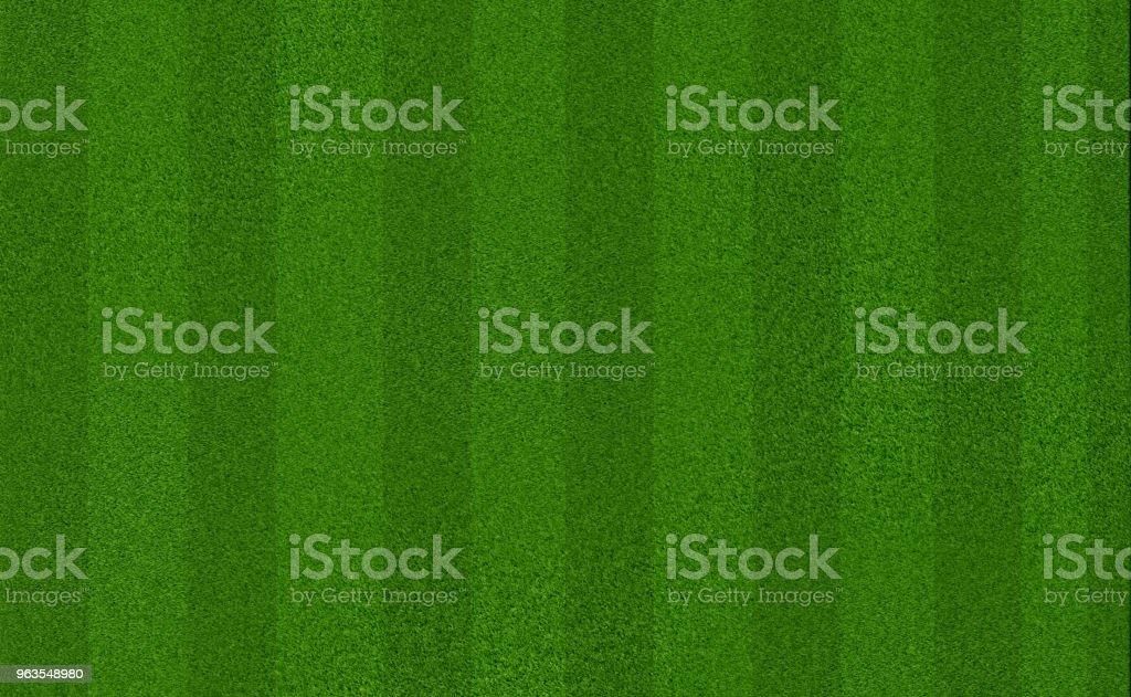 Champ d'herbe pré vert pour le football ou soccer - Photo