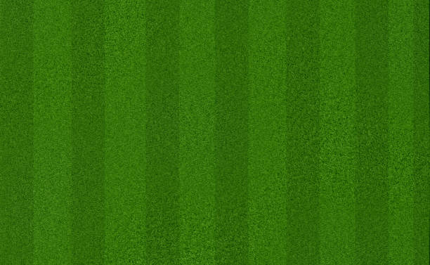 Green meadow grass field for football or soccer Green meadow grass field for football or soccer soccer field stock pictures, royalty-free photos & images
