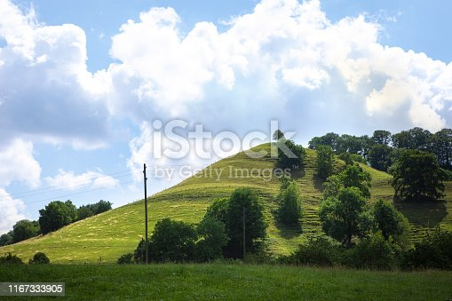 Swiss countryside in summer day. Bushes and small trees on the green hill.