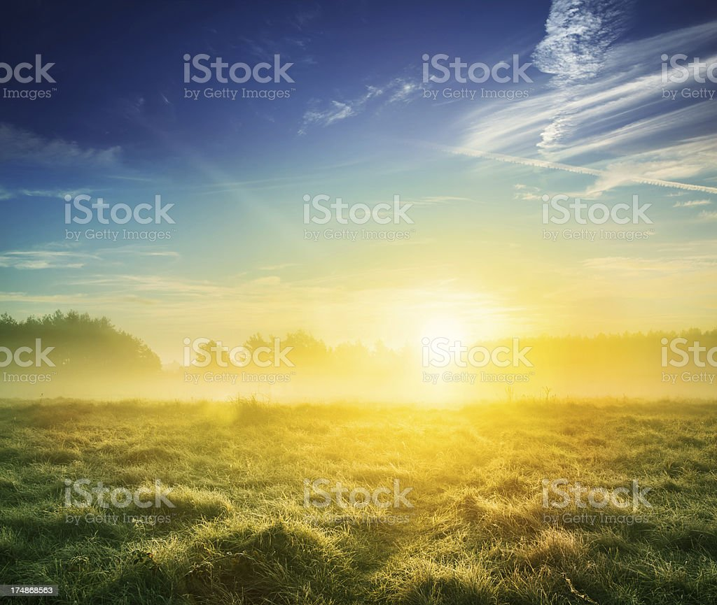 Green Meadow Landscape during Foggy Sunset royalty-free stock photo
