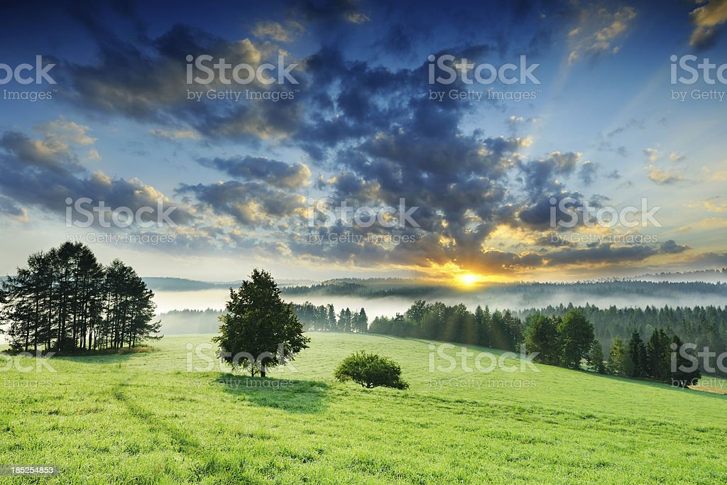 Green meadow on a mountain slope at foggy dawn royalty-free stock photo