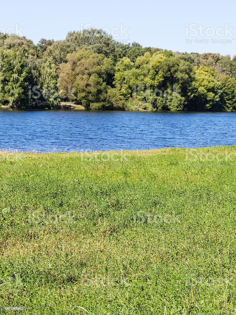 green meadow on riverbank in summer day stock photo