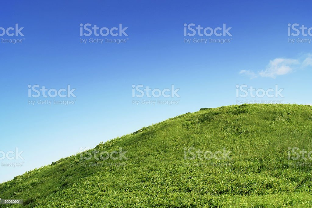 Green meadow under clear blue sky royalty-free stock photo