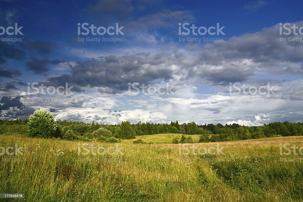 Green meadow under dramatic sky landscape royalty-free stock photo