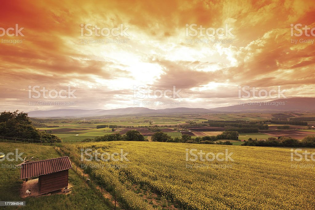 Green meadow under sunset sky with clouds royalty-free stock photo