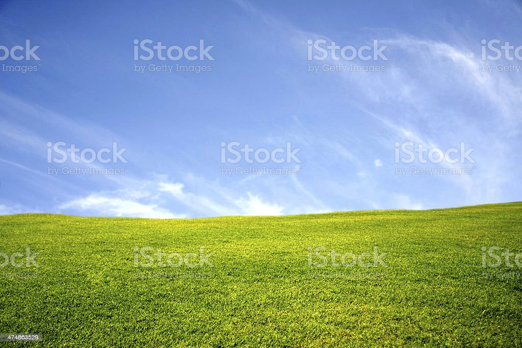 green meadow with blue sky royalty-free stock photo