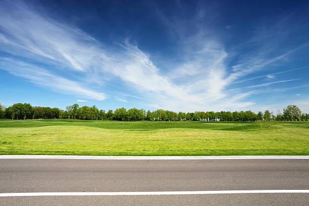 緑の牧草地、木々とアスファルト道路 ストックフォト