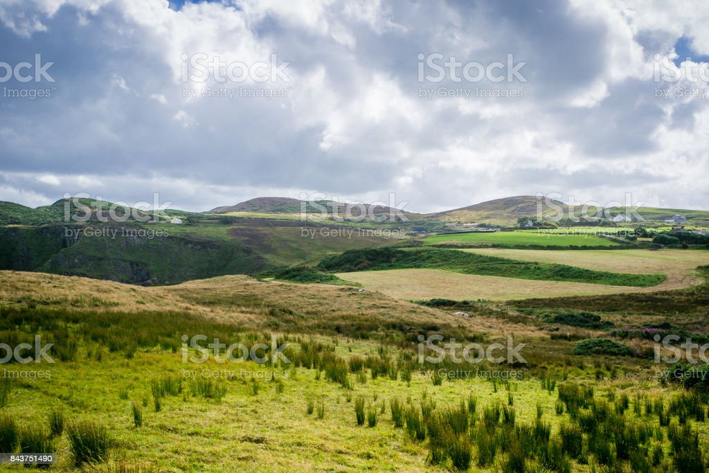 Green meadows in Ireland stock photo