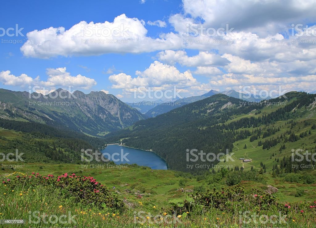 Green meadows, lake Arnensee and summer clouds stock photo