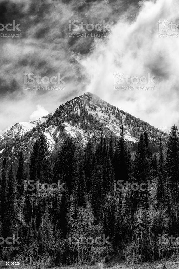 Green Meadows Snowy Peaks stock photo
