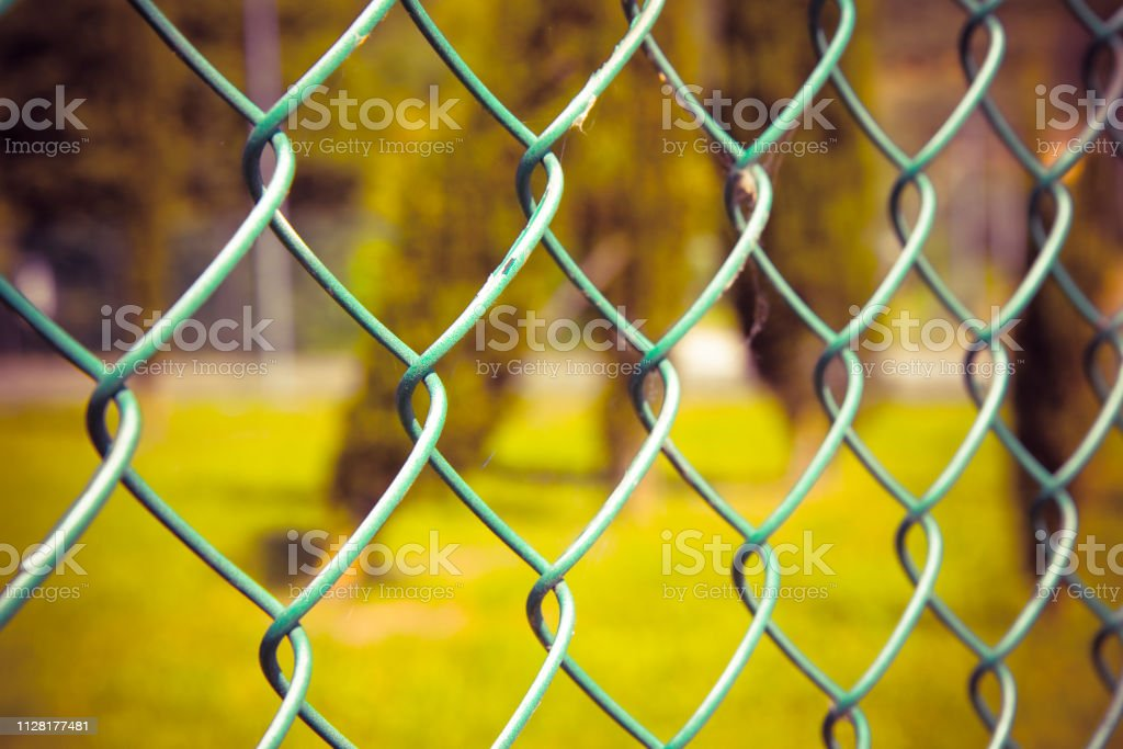 Green metal wire mesh against a green area - concept image stock photo