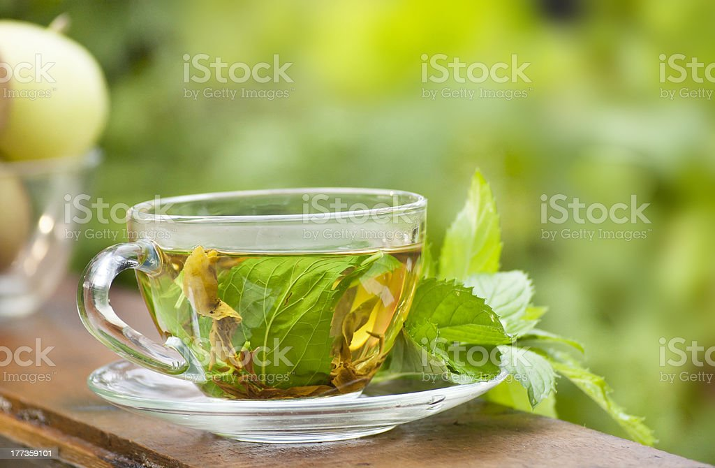 green mint tea and apples  at nature background stock photo