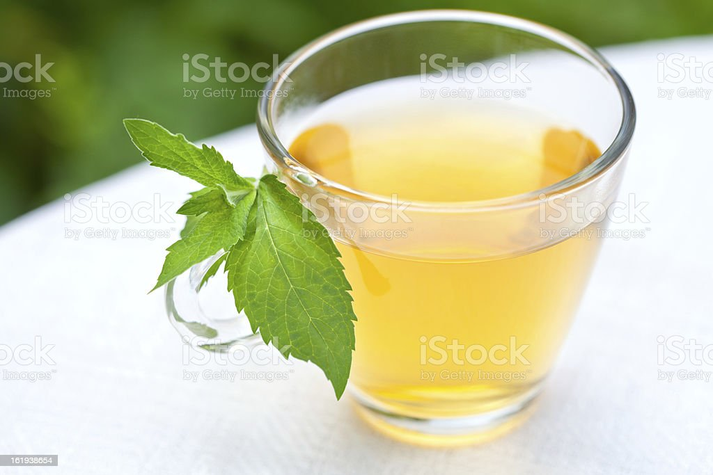 Green mint tea royalty-free stock photo