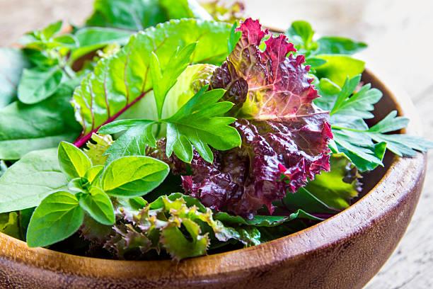 green mixed salad leaves - saladier photos et images de collection