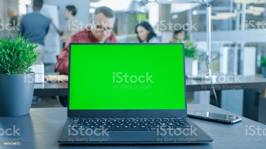 Green Mock-up Screen Laptop on the Table. In the Background Creative Young Professionals Working in the Modern Office. zbiór zdjęć royalty-free