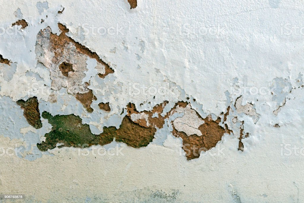 Green Mold Fungus and Peeling and Flaking Paint stock photo