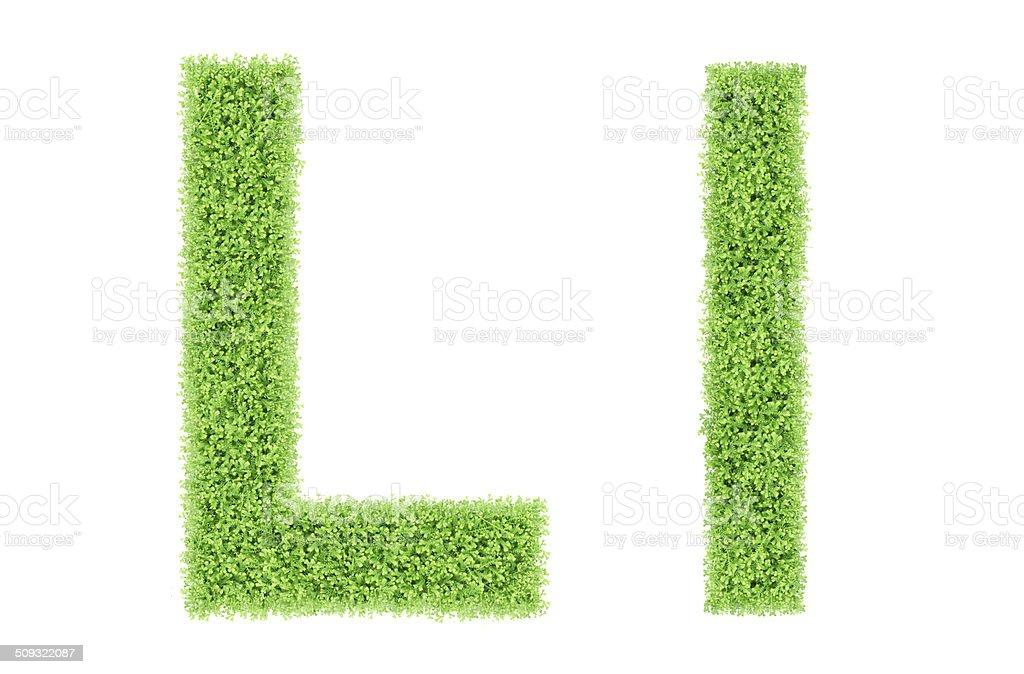 green moss alphabet, L stock photo