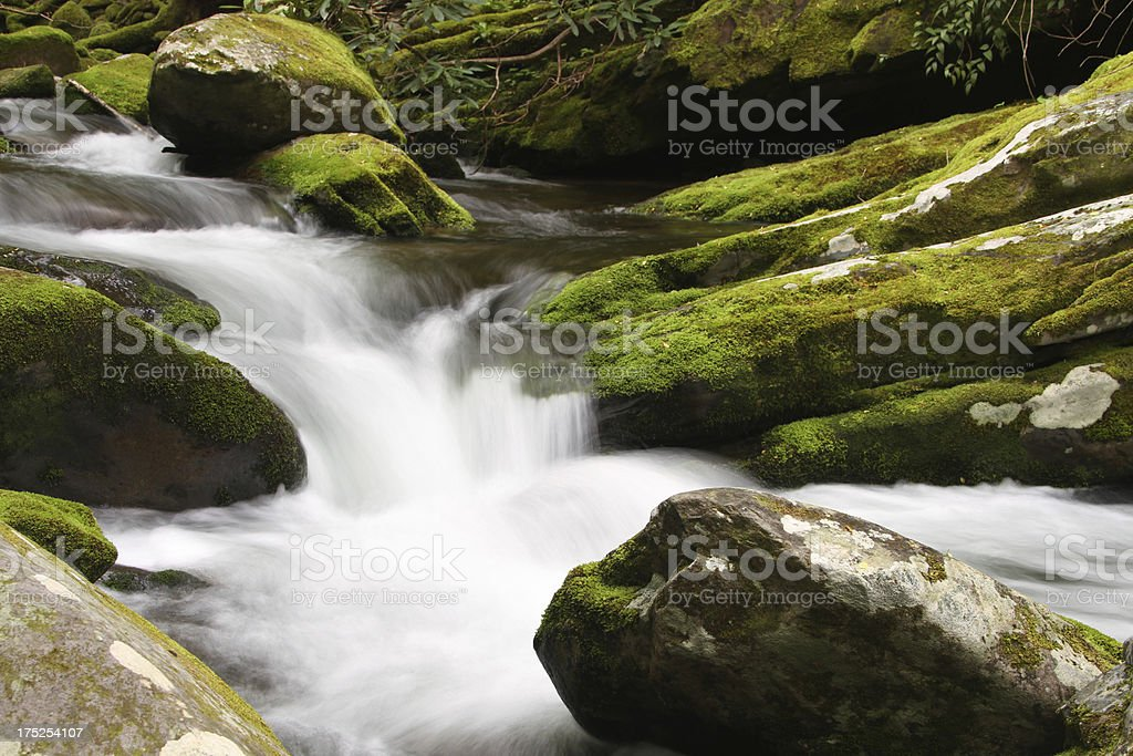 Green Moss Mountain Stream Flowing Water Smoky Mountains Tennessee stock photo