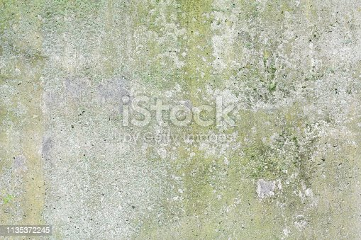 green moss on abstract stone background