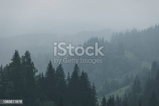 Green mountain forest in cloudy and rainy dark moody weather, Smoky mountains national park, USA