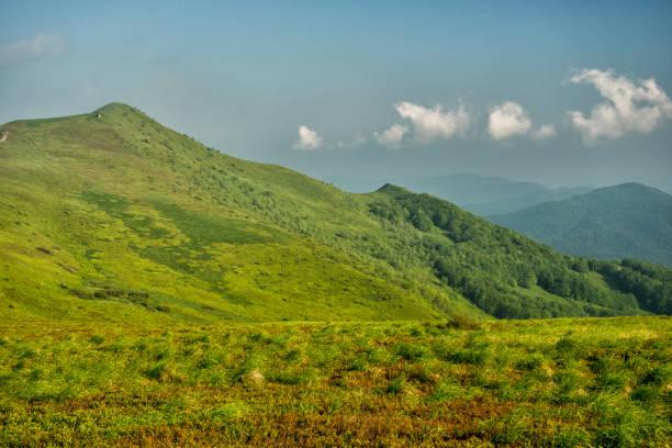 Grüne Bergwiese und blauer Himmel. Eine atemberaubende Sommer-Berglandschaft. Polonina Carynska. Nationalpark Bieszczady. Polen – Foto