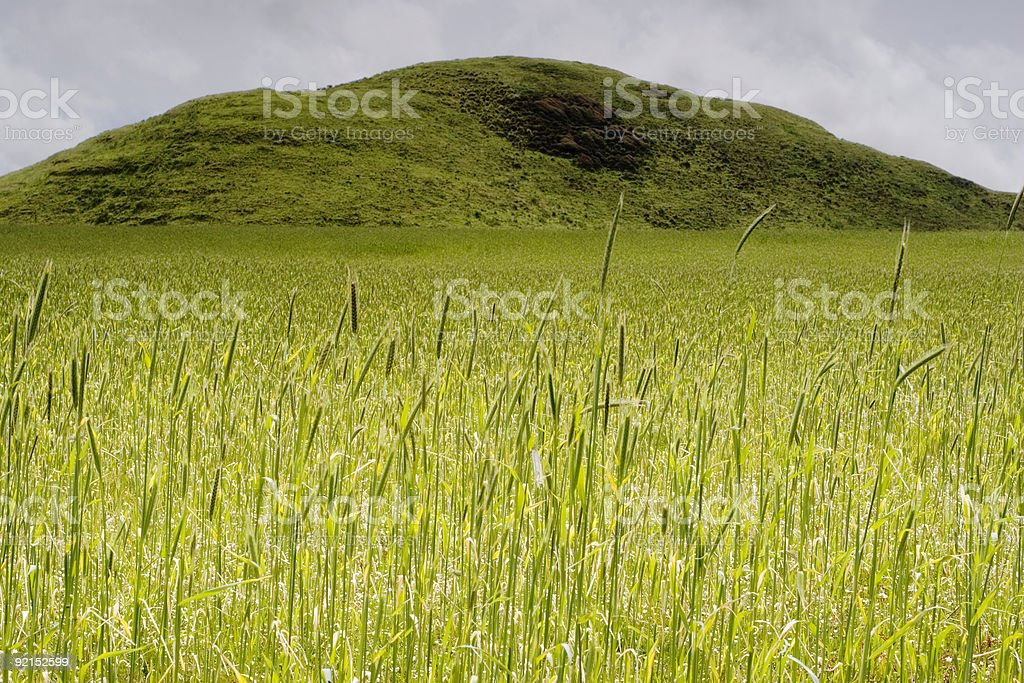 Green Mountain stock photo