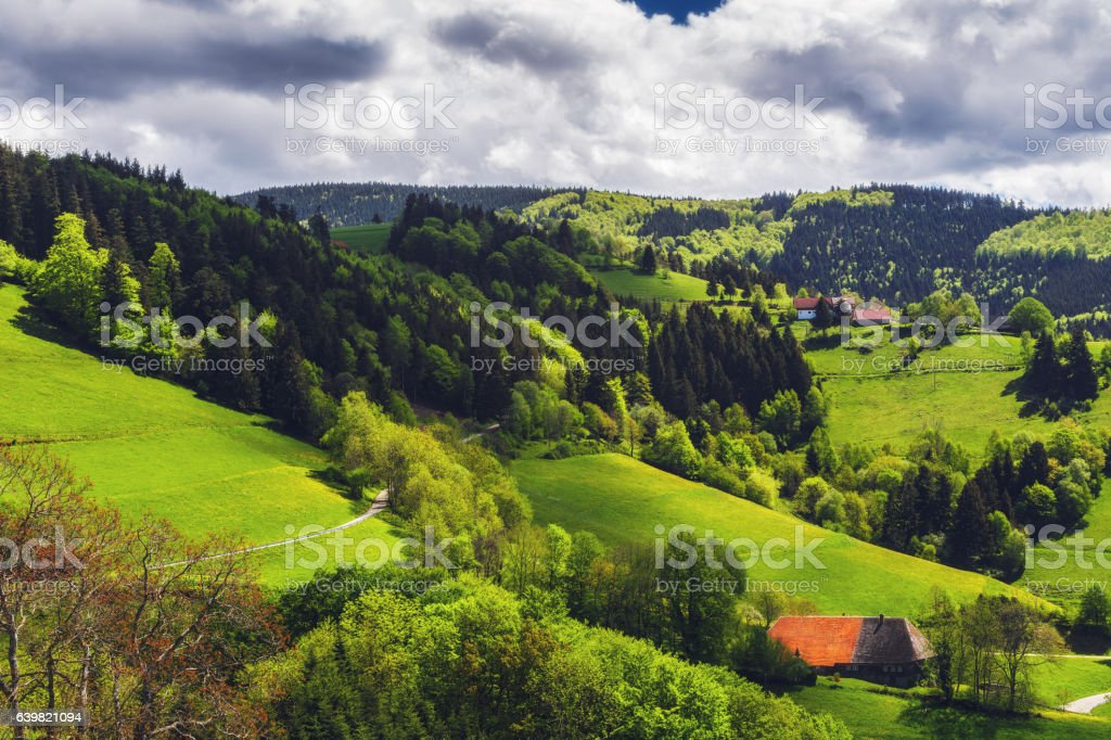 Green mountain valley with forests, fields and village in summer. stock photo
