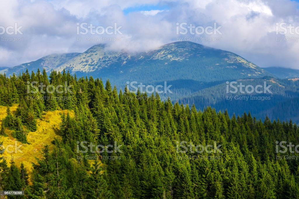 green mountain with a forest and dense clouds royalty-free stock photo