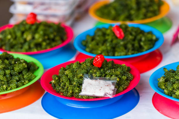 Grüne Nama in Platten auf dem lokalen Markt, Fidschi. Nahaufnahme. – Foto
