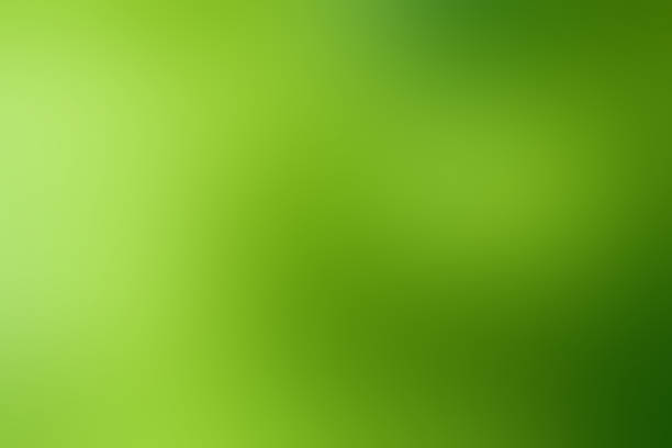 green natural background - green color stock pictures, royalty-free photos & images