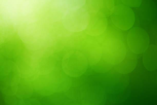 green natural background - green background stock photos and pictures