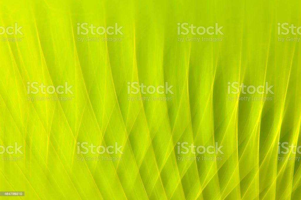 Sfondo Verde Natura Fotografie Stock E Altre Immagini Di 2015 Istock