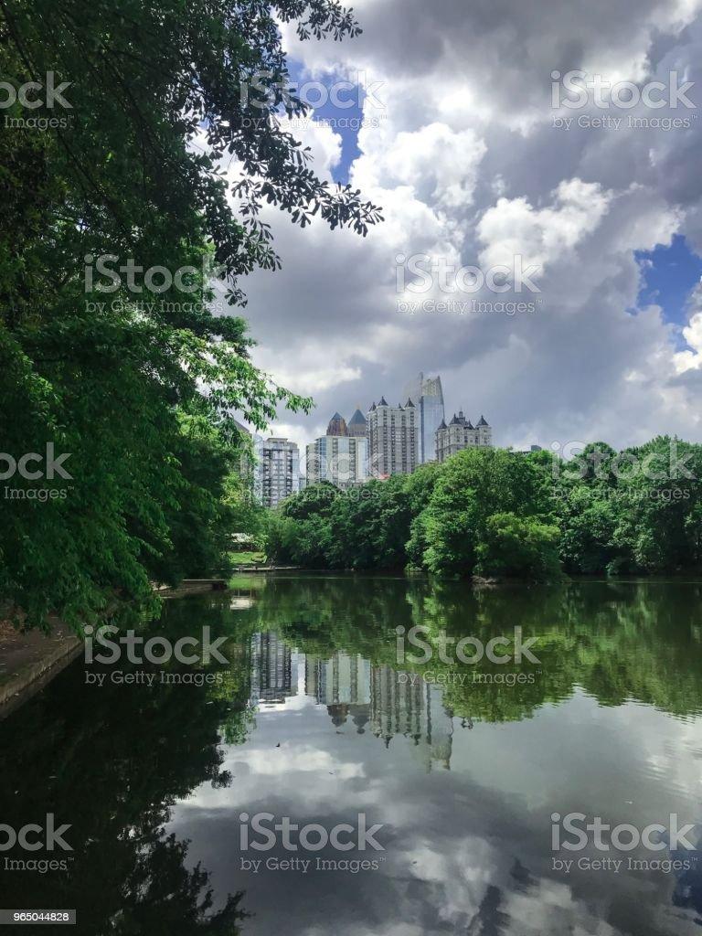 Green nature near the lake zbiór zdjęć royalty-free