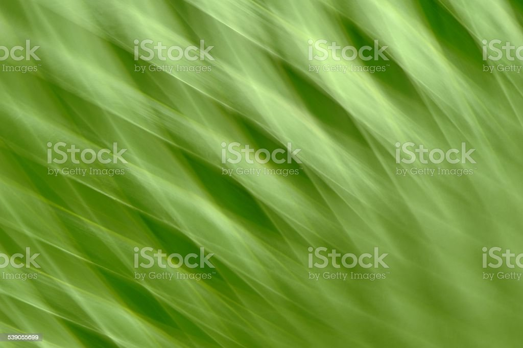 green nature wave  texture background stock photo