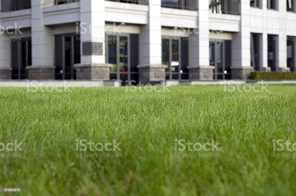 Green office space, focus is on the grass royalty free stockfoto