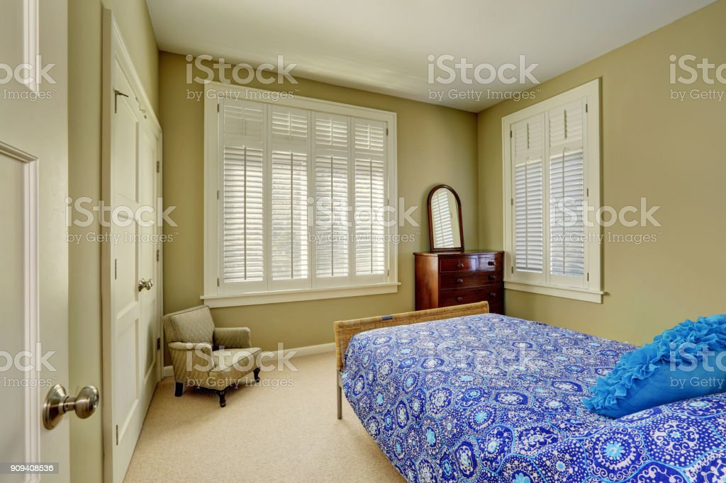 Green olive bedroom interior with walk-in closet. stock photo