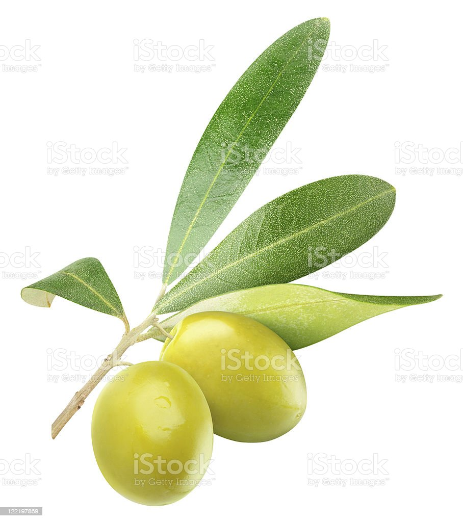 Green olives on white background royalty-free stock photo