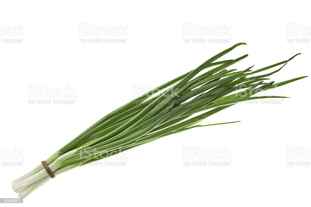 Green onion royalty-free stock photo