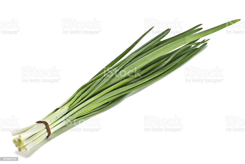Green onion royalty-free stock photo