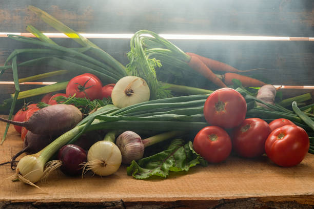 Cтоковое фото Green onions, garlic, carrots, beet and tomatoes against the background of old grey boards in fog
