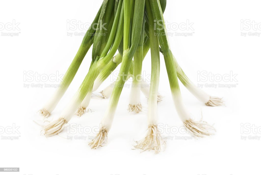 Green Onions on White Background royalty free stockfoto