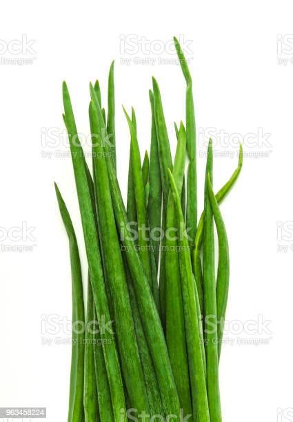 Cebollas Verde Foto de stock y más banco de imágenes de Cebolla