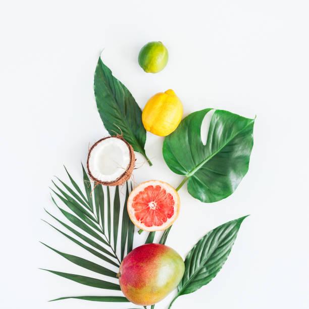 그린 팜 잎과 열 대 과일입니다. 평면 위치, 최고 보기 - 열대 과일 뉴스 사진 이미지