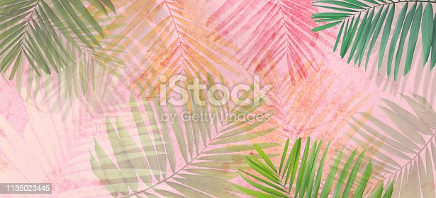 Close up green palm leaves over pink painted grunge concrete wall. Banner background with copy space.