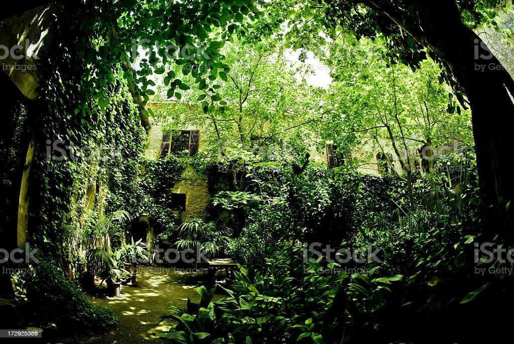 Green Paradise royalty-free stock photo