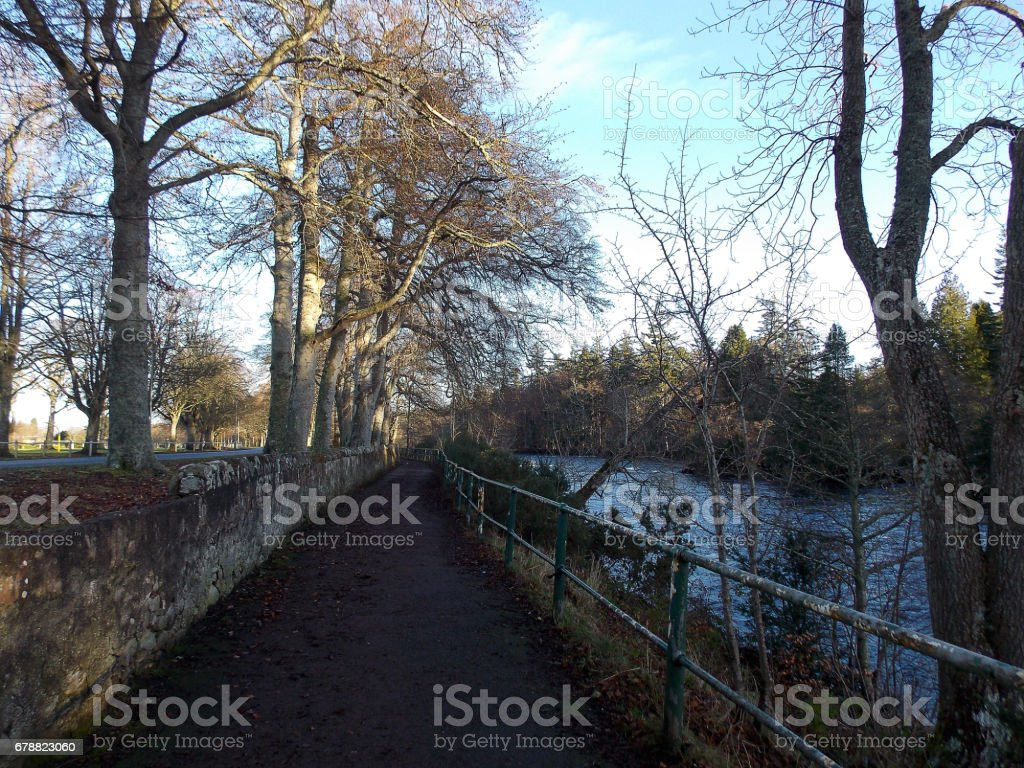 Green park and footpath royalty-free stock photo