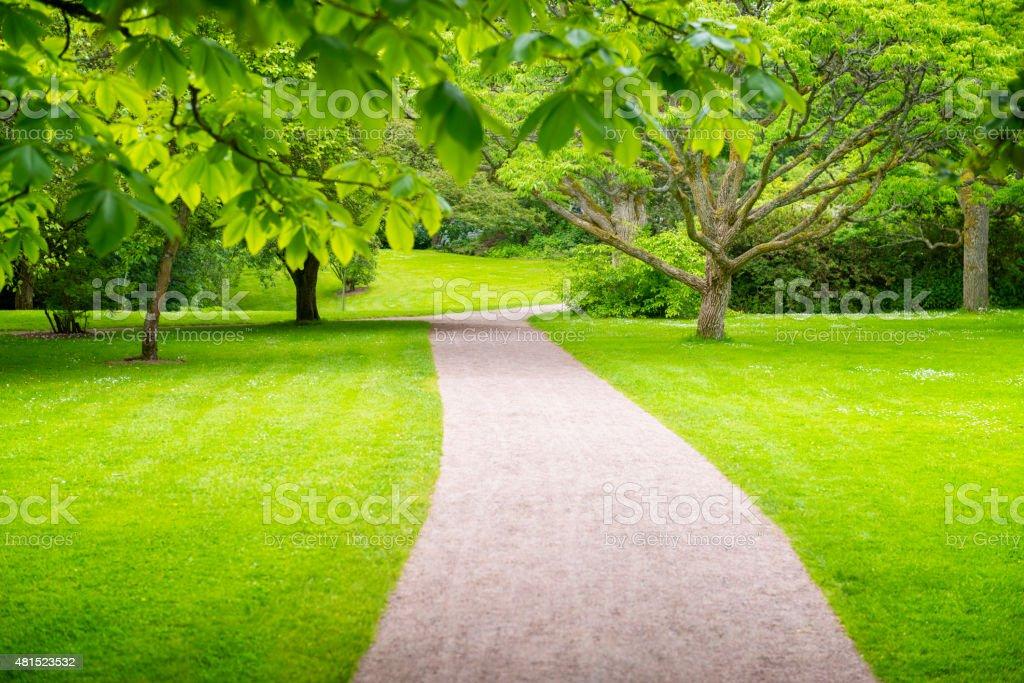 Green park footpath stock photo