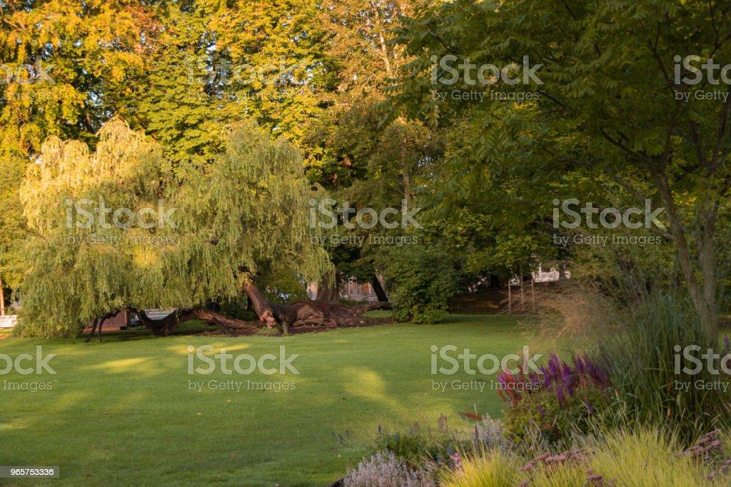 Groen park in Göteborg - Royalty-free Aangelegd Stockfoto