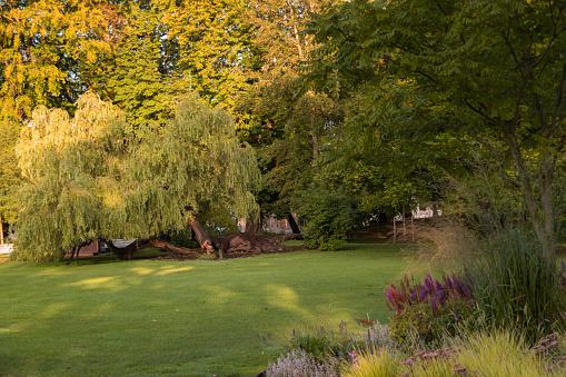 Groen Park In Göteborg Stockfoto en meer beelden van Aangelegd