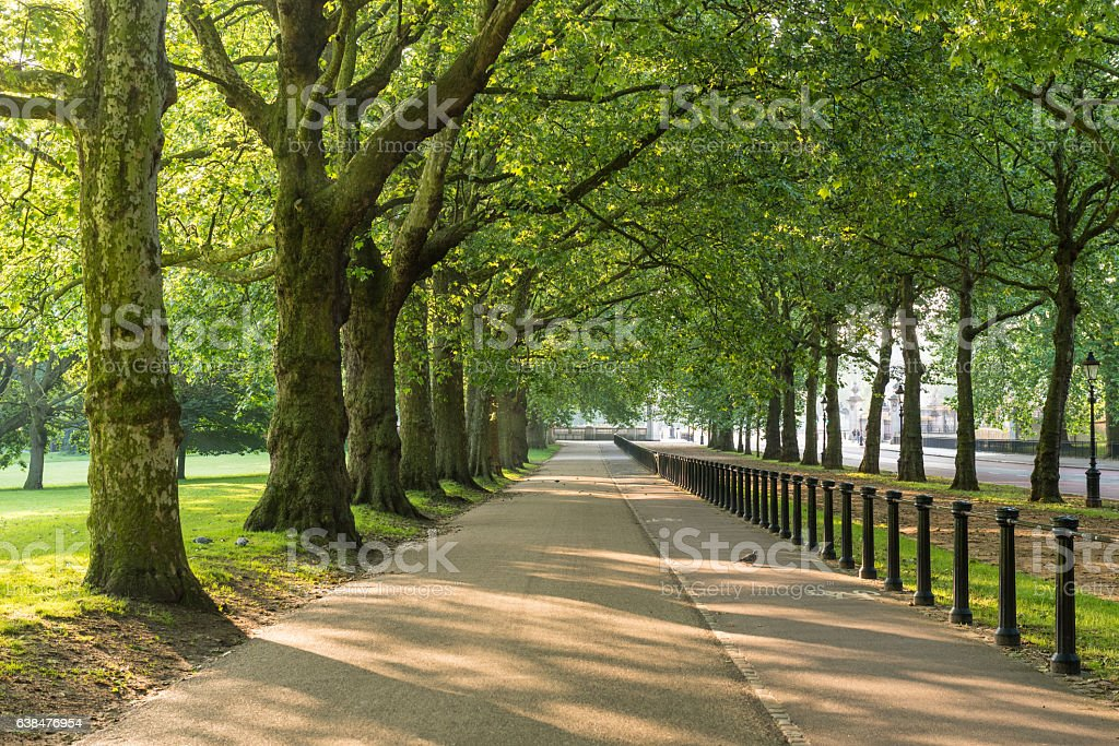 Green Park, London, England, UK royalty-free stock photo